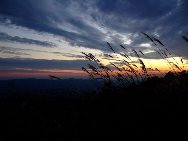 次の滝と生石高原でススキ