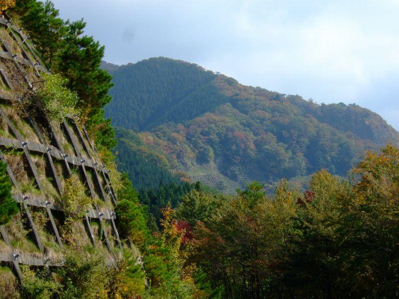 高野山~高野龍神スカイラインの紅葉の様子(2012年度版)