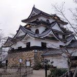 マガモ自然繁殖の南限地 三島池と彦根城を散策