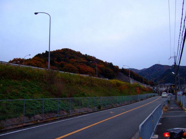 山中渓~雄ノ山峠付近の紅葉