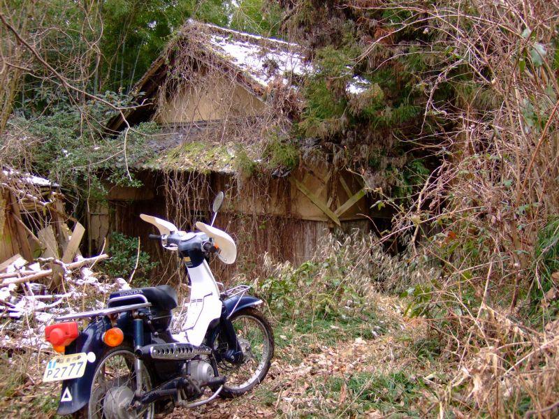 スーパーカブで葛畑~梵天山への林道、神通や稲倉林道他を散策