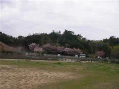 キャッチボール&温泉(大阪・阪南「平野台の湯 安庵」)
