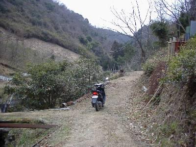 面接&ライブDioZXで楠畑山中の林道を散策