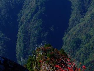 ダンディー室伏と往く大台ケ原の紅葉狩り(2012年)が完成