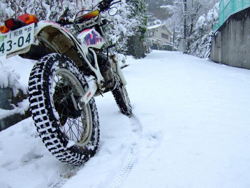 TLM220Rで雪道散策(未遂)